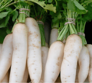 Daikon - the umami in Ooft!