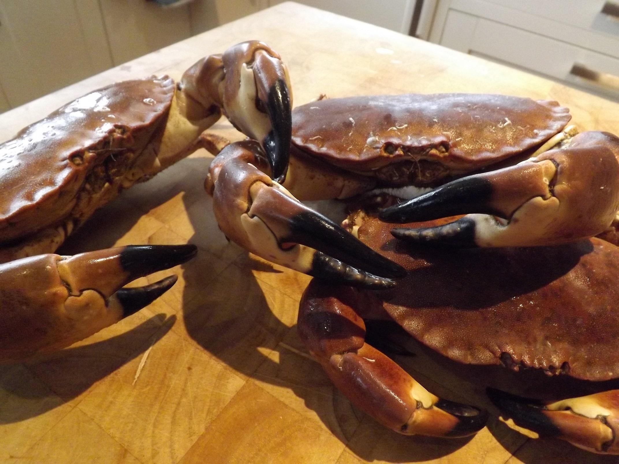 curry crab reciep